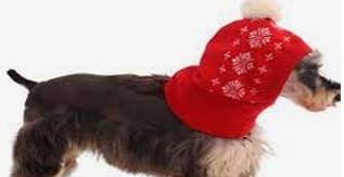 Kuoser Dog Winter Hat