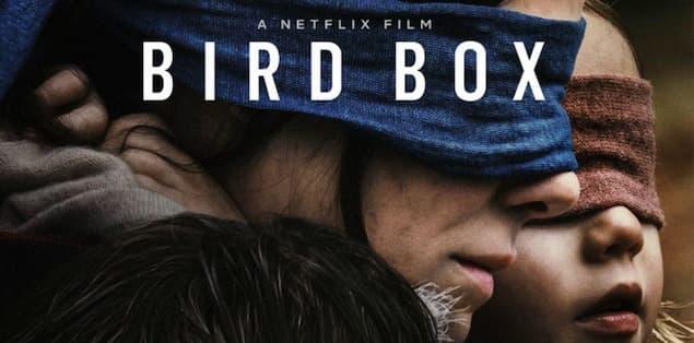 Bird Box (Year of Premier: 2018)