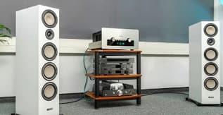 Definitive Technology D17 Demand Series Modern High-Performance 3-Way Tower Speaker